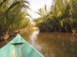 Quyến rũ rừng dừa Bảy Mẫu ở Hội An