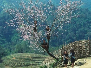 Hà Nội – Lào Cai – Sapa
