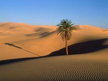 Phan Thiết - Biển xanh, cát trắng, nắng vàng