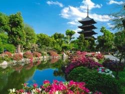 8 điểm đến tuyệt vời ở Kyoto