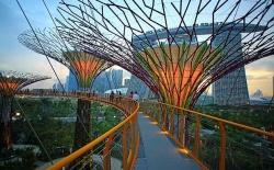 Những điểm đến không thể bỏ qua khi đi du lịch Singapore cùng trẻ em