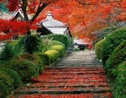 Mùa thu tuyệt vời ở Nhật Bản