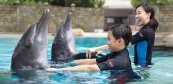 Những điểm vui chơi kỳ thú ở đảo Sentosa - Singapore
