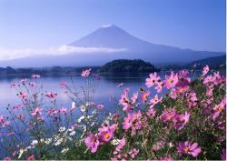 Những điều cần lưu ý để không bị xấu hổ ở Nhật Bản