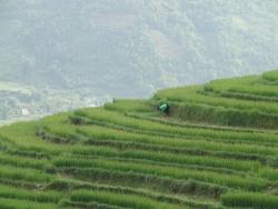Độc đáo Bình Liêu – Quảng  Ninh