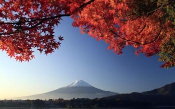 Du lịch Nhật Bản, Quyến Rũ Mùa Thu Nhật Bản