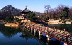 Mua gì khi đi du lịch Hàn Quốc
