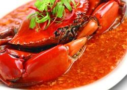 Khám phá văn hóa ẩm thực Singapore