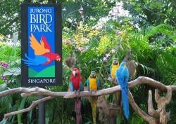 Những địa điểm du lịch ở Singapore