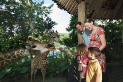 5 vườn thú ở Singapore thu hút khách du lịch