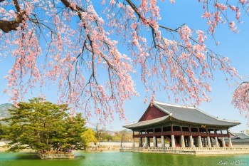 TẾT ÂL 2018 SEOUL - NAMI - EVERLAND 4N3Đ