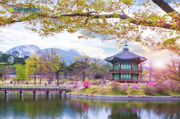 TẾT ÂL 2018 SEOUL -  NAMI - EVERLAND 4N4Đ