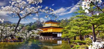 RỰC RỠ SẮC HOA NHẬT BẢN 2018 OSAKA – NAGOYA – YAMANASHI – TOKYO