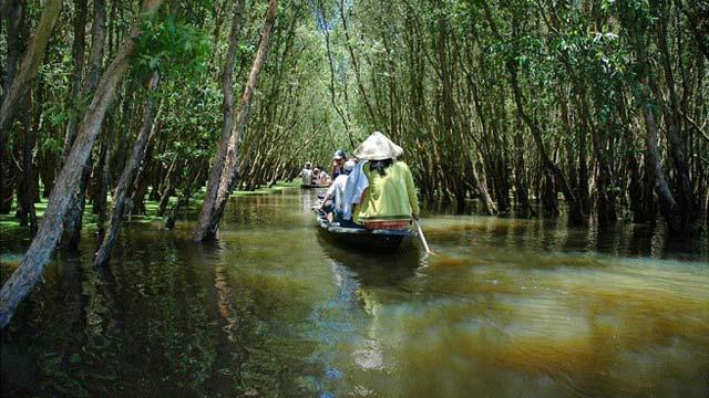 Du lịch về nguồn Xẻo Quýt - Cholontourist