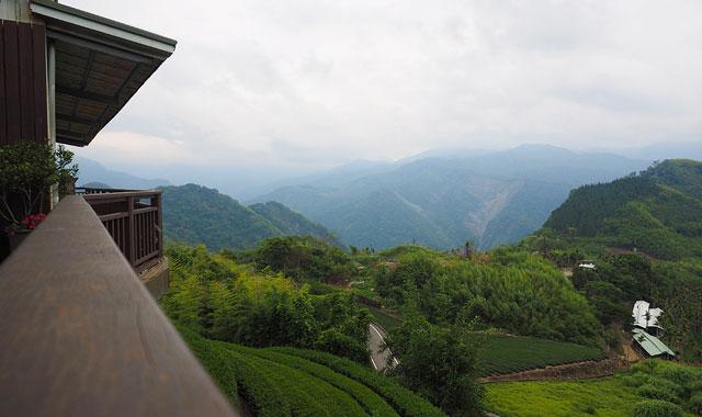 Đồi chè Alishan Đài Loan - Tour du lịch Đài Loan 5 ngày 4 đêm Cholontourist