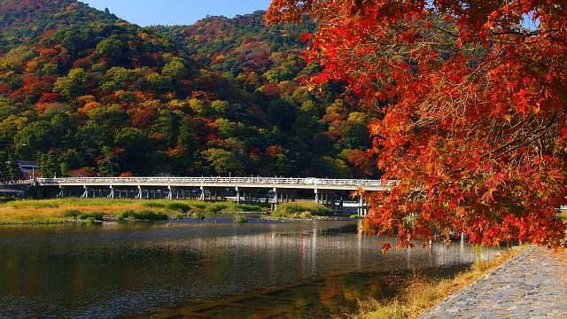 Cầu Togetsukyo - Tour du lịch Nhật Bản Cholontourist