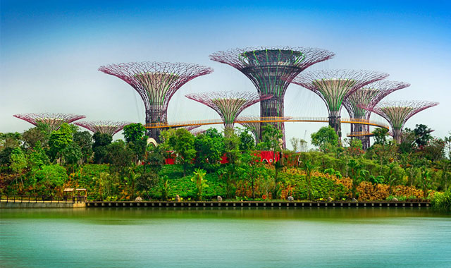 Khu vườn sinh thái Bay South Gardens by the Bay Singapore